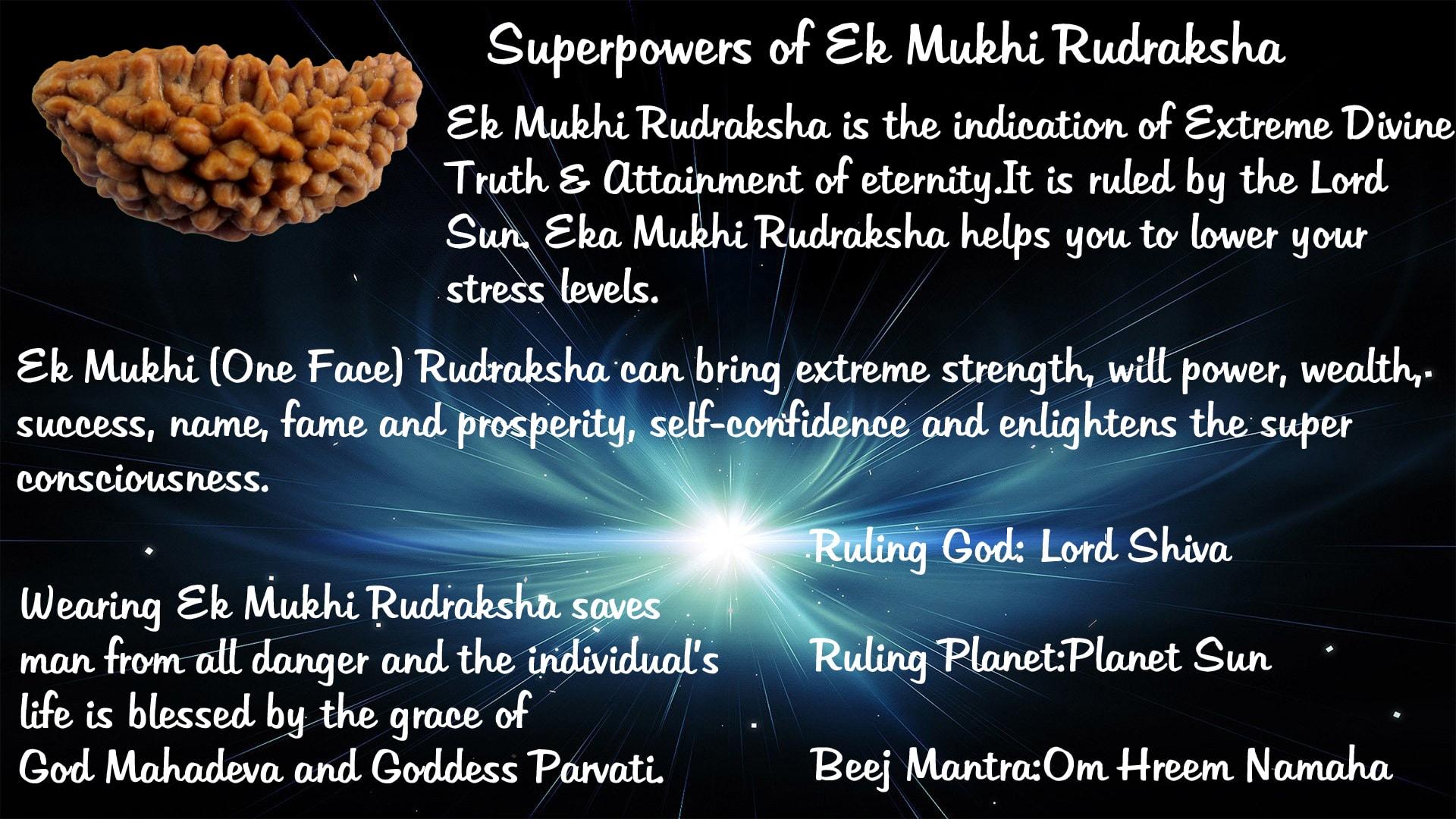 Superpowers of Ek Mukhi Rudraksha